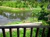 lake-view-from-balcony