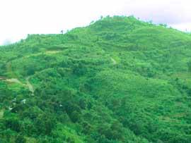 bandarban chimbuk hill