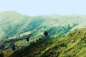 chimbuk hill, bandarban