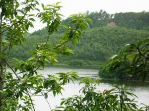 bandarban prantik lake
