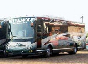 Shyamoli Bus Services