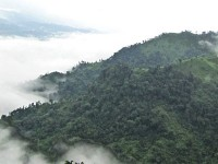 Nilgiri Bangladesh