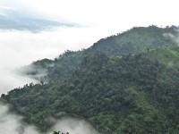 Nilgiri Bangladesh