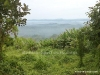 hill-view-in-bandarban