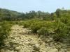 pebble-stone-road-in-bandarban