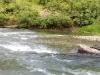 stream-in-the-bandarban-river